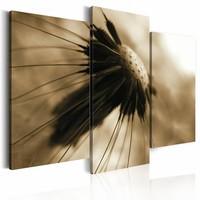 Schilderij - Paardenbloem in sepia , beige bruin , 3 luik