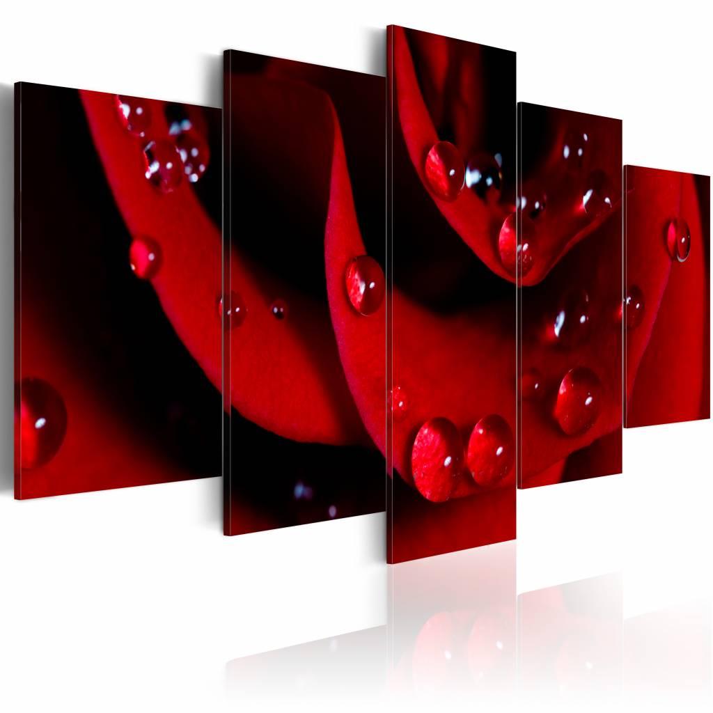 Schilderij - Roos met dauwdruppels , rood , 5 luik