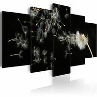 Schilderij - Vluchtigheid van de paardenbloem , zwart wit , 5 luik , 2 maten