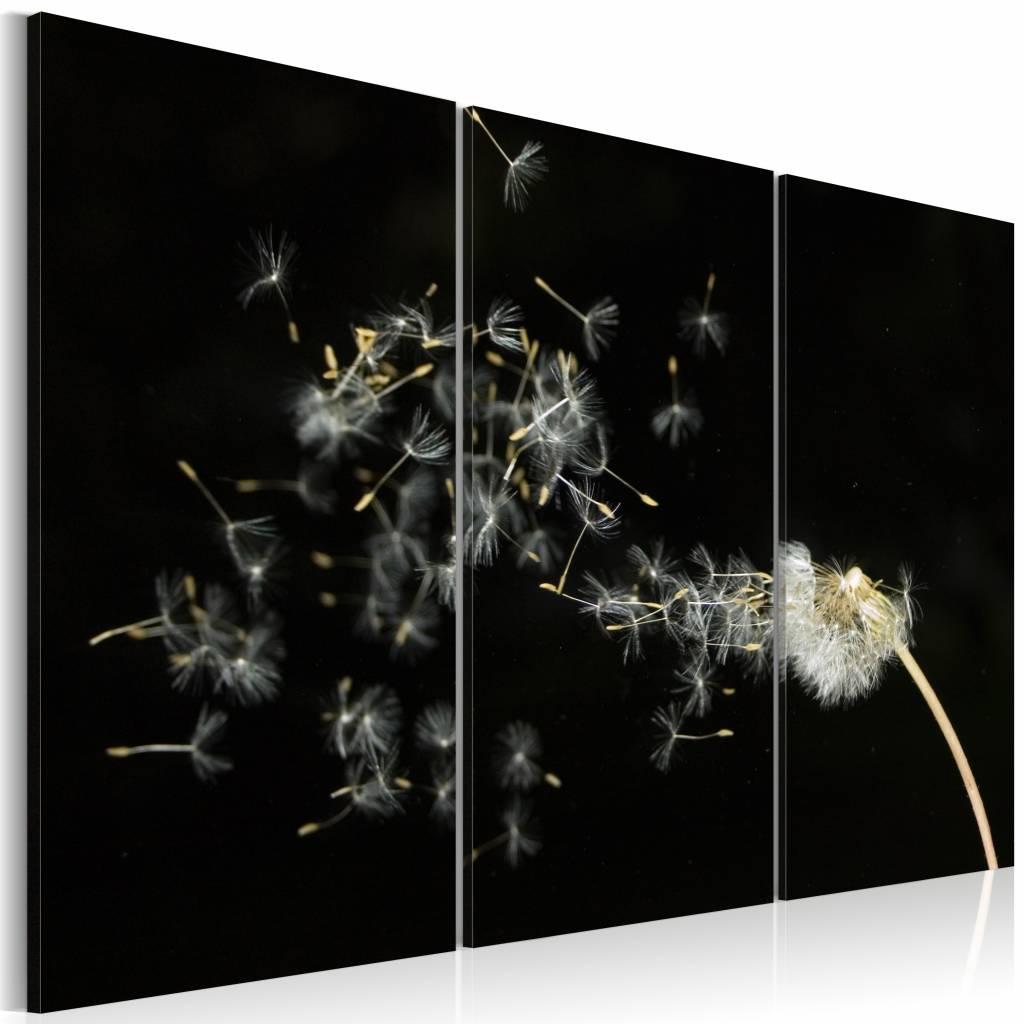 Schilderij - Paardenbloem verwaait in de wind , zwart wit , 3 luik