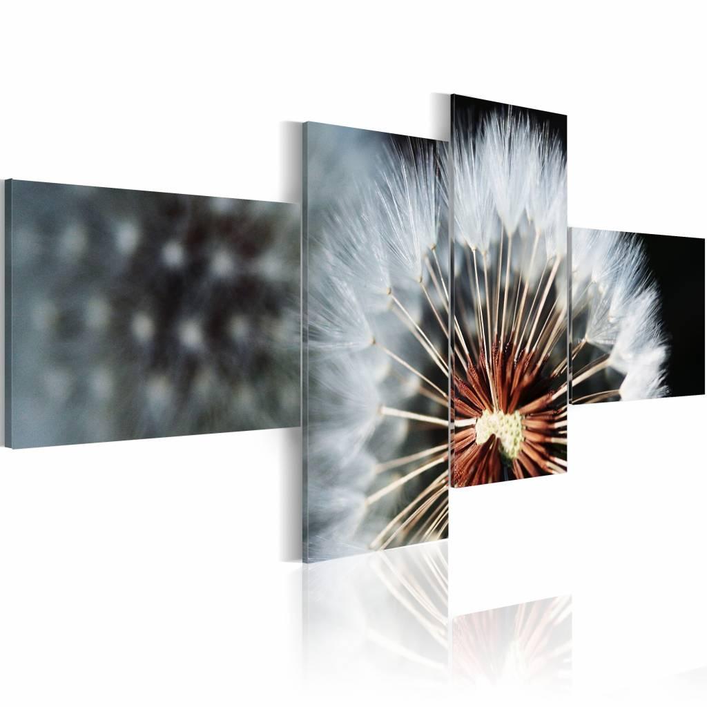 Schilderij - Paardenbloem - 4 luik , zwart wit