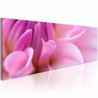 Canvas Schilderij - Charmante dahlia  120x40cm , roze