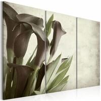 Schilderij - callas - vintage , bruin groen , 3 luik