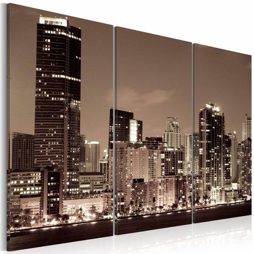Schilderij - Avond in Miami, USA, Sepia, 3luik