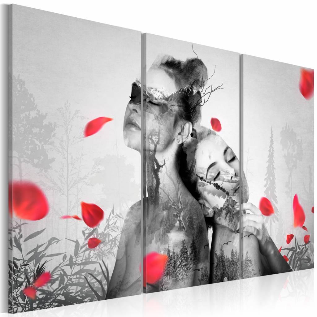 Schilderij - Natuurlijke Schoonheden, Zwart-Wit/Rood, 3luik, wanddecoratie