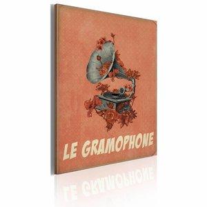 Schilderij - Le gramophone, de grammofoon, Oranje, 50x70cm, 1luik