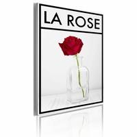 Schilderij - La rose, de roos, Rood/Zwart-Wit, 50x70cm, 1luik