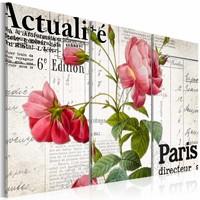 Schilderij - Parijs met bloemen, Roze, 2 Maten, 3luik
