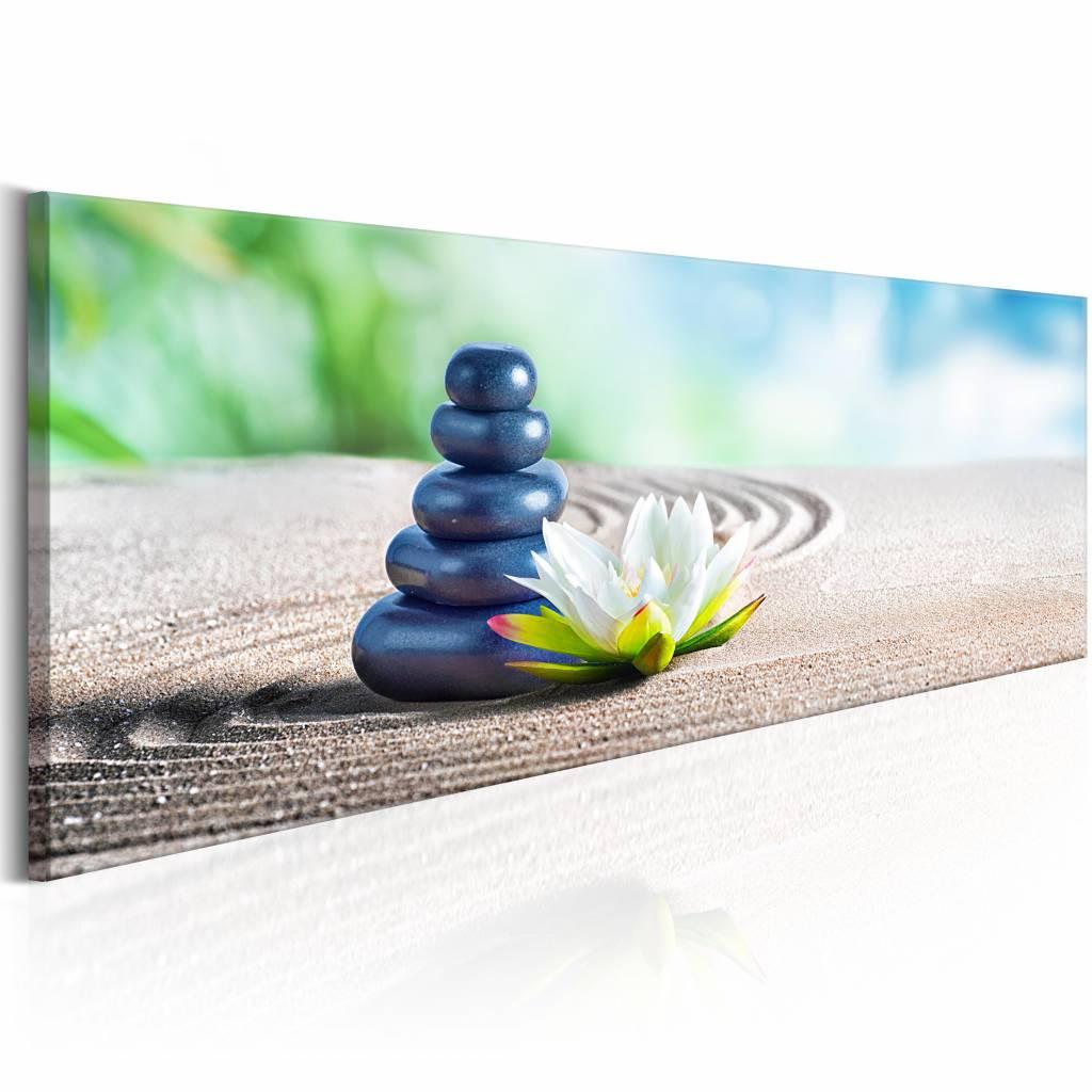 Schilderij - Calm Place , stenen en bloem , wit zwart , 1 luik , 150x50