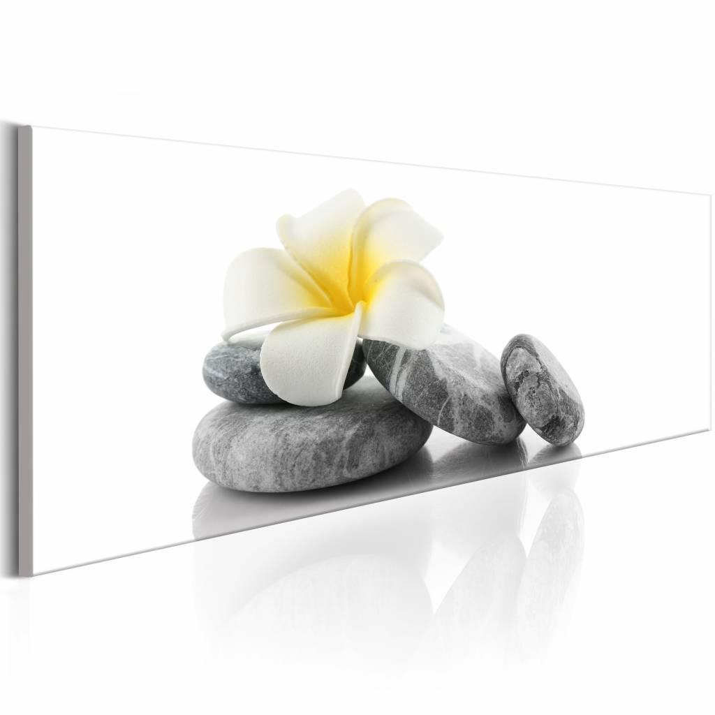 Schilderij - White Lotus , stenen bloem , wit grijs, 1 luik , 150x50