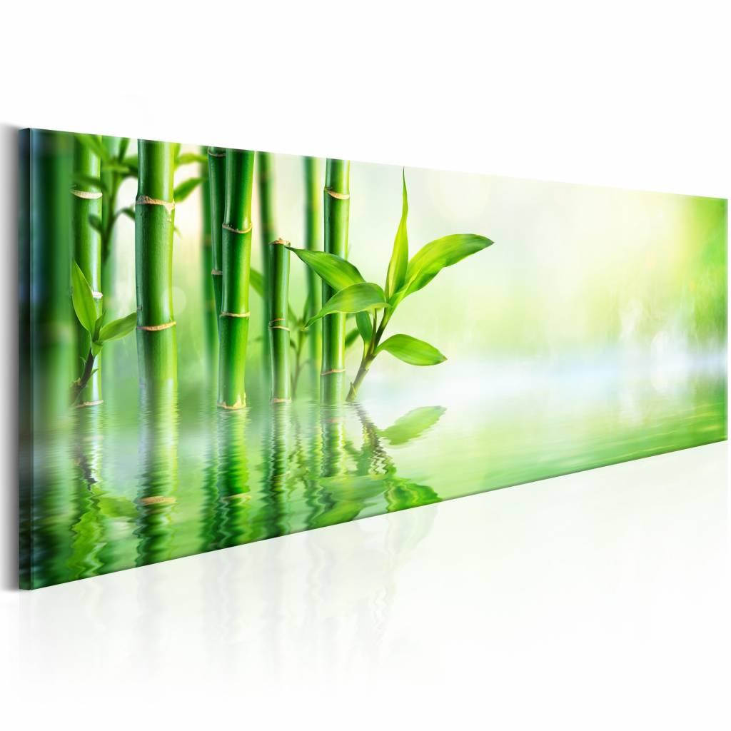 Schilderij - Green Bamboo , groen bamboe, 1 luik , 150x50