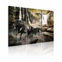 Schilderij - Zwart Paard voor Waterval,  3luik