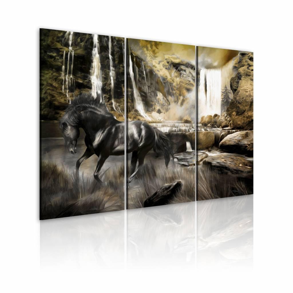 Schilderij - Zwart Paard voor Waterval, zwart/groen, premium print , Wanddecoratie, 3luik