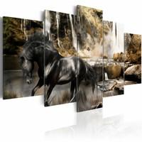 Schilderij Zwart paard voor waterval III, 5 delen,  2 maten, zwart/bruin