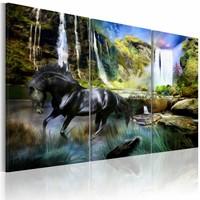 Schilderij - Zwart Paard voor Waterval VI, Wanddecoratie , print op canvas , 5luik