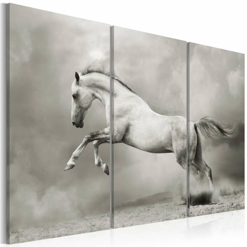 Schilderij Schimmel II, wit/grijs, 3 delen, 2 maten