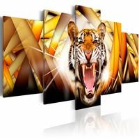 Schilderij - Energie van een tijger, Geel/Oranje, 5luik
