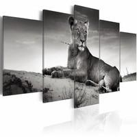 Schilderij - Leeuwin in de Woestijn, Zwart/Wit, wanddecoratie, Print op Canvas , 5luik