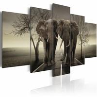 Schilderij - 2 Olifanten, grijs, 5luik, grijs