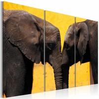 Schilderij - Kus van een Olifant, geel/bruin, wanddecoratie, 3luik , print op canvas