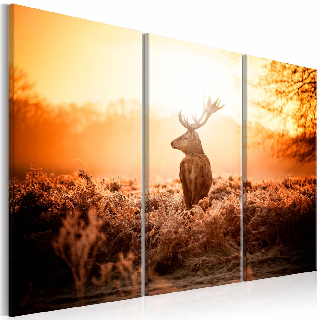 Schilderij - Hert voor Zonsondergang , 3 luik , oranje bruin , 2 maten