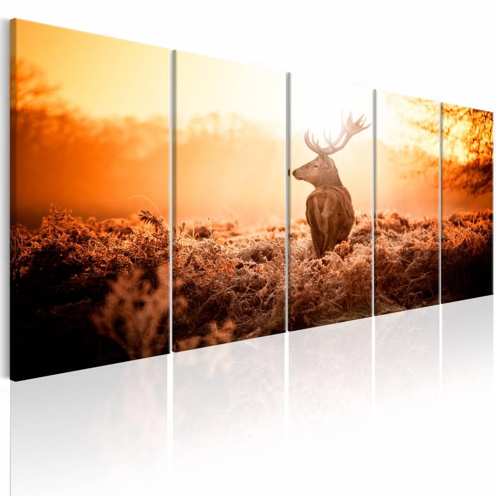 Schilderij - Hert voor Zonsondergang , oranje , 5 luik , 2 maten
