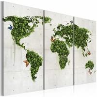 Schilderij - Wereldkaart - Groene land van Vlinders, Groen/Grijs, 3luik