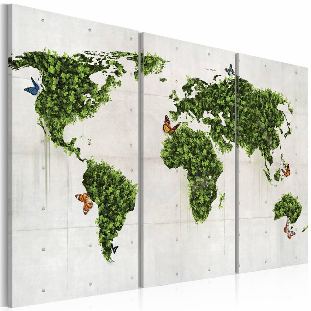 Schilderij - Wereldkaart - Groene land van Vlinders, Groen/Grijs, 3luik , premium print op canvas