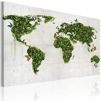Schilderij - Groene land van vlinders, 2 Maten, 1luik