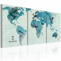 Schilderij - Wereldkaart - Ornithologische Kaart, Blauw, 3luik , premium print op canvas