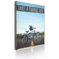 Schilderij - Take a Furious Ride, 50x70cm