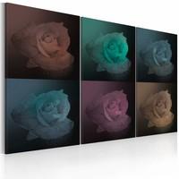 Schilderij - Zes schaduwen van roze, multikleur, 3luik, 2 maten