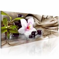 Schilderij - Zen compositie: orchidee