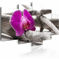 Schilderij - Paarse Orchidee op het strand , grijs , 5 luik