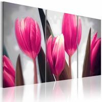 Schilderij - Paarse tulpen , grijs groen, 3 luik