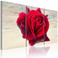 Schilderij - Lyrische roos , 3 luik