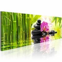 Schilderij - Zen  120x40cm , groen roze , steen , 1 luik