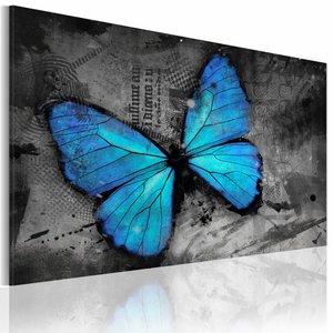 Schilderij - Studie van de vlinder , grijs blauw , 1 luik , 2 maten