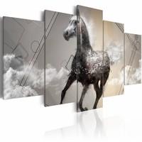 Schilderij - Paard in galop , grijs wit , 5 luik