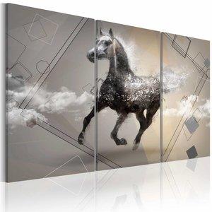 Schilderij - Paard in gallop , grijs wit , 3 luik , 2 maten