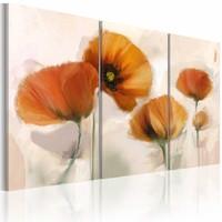 Schilderij - Artistieke klaprozen, oranje , wit , 3 luik