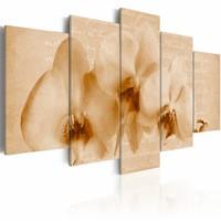 Schilderij - Orchidee en melancholie , beige , 5 luik