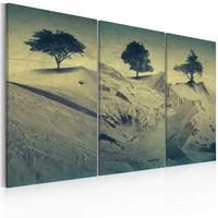 Schilderij - Zand heuvels , groen beige , 3 luik , 2 maten