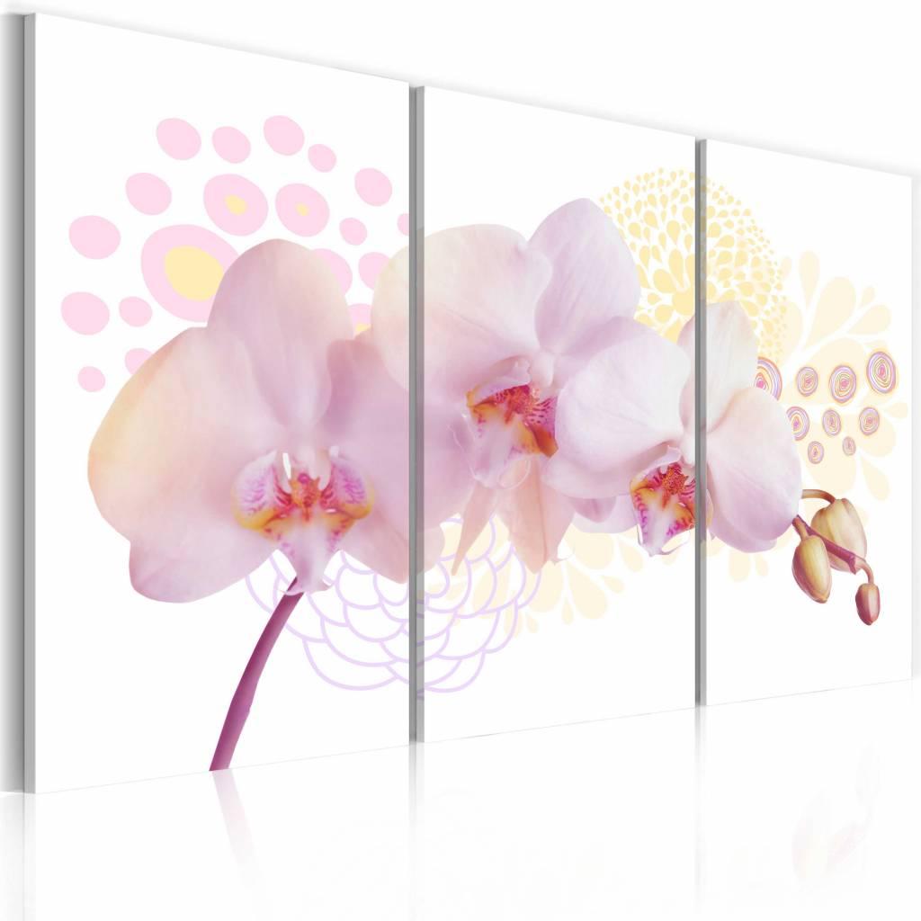 Schilderij - Witte dame, Orchidee , 3 luik , roze