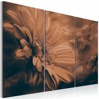 Schilderij - Immateriële schoonheid , bloem , roze bruin , 3 luik