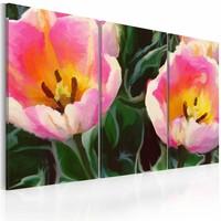 Schilderij - Bloeiende tulpen , groen roze , 3 luik