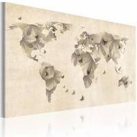 Schilderij - Atlas van vlinders, wereldkaart , beige , 1 luik , 2 maten