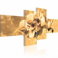 Schilderij - Orchideeën in sepia