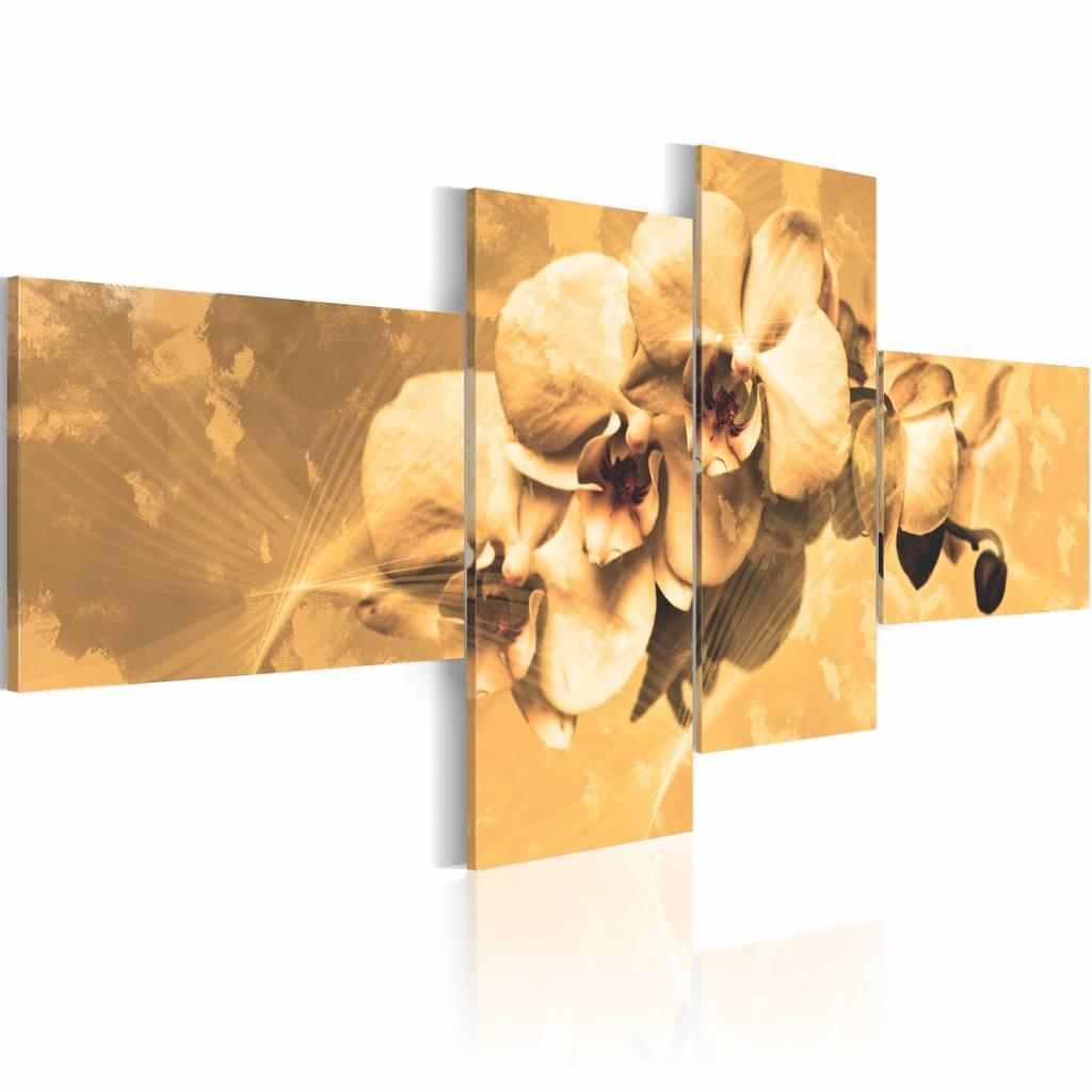 Schilderij - Orchideeën in sepia , bloem , 4 luik