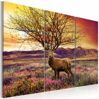 Schilderij - Fancy gewei - Hert , oranje groen , 3 luik , 2 maten